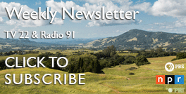 Newsletter subscribe Thumbnail